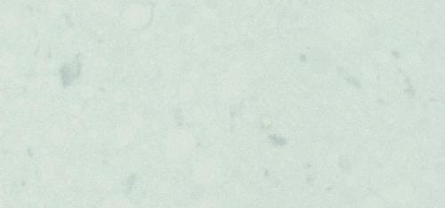 4141 Misty Carrera